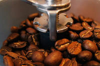 What's the Most Expensive Pound of Coffee?