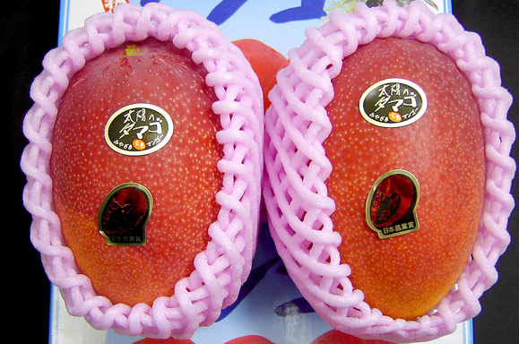 The World's Most Expensive Mango is Unexpected, to say the least